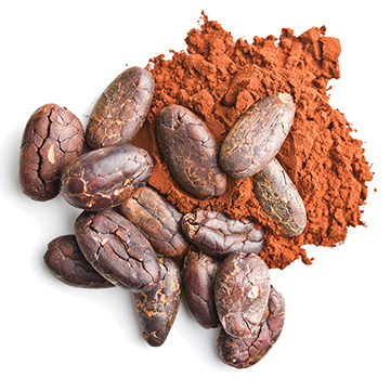 Principe actif cacao
