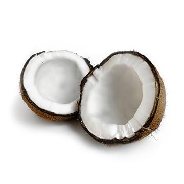 Principe actif noix de coco