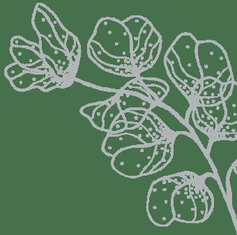 fleur estime et sens illustration